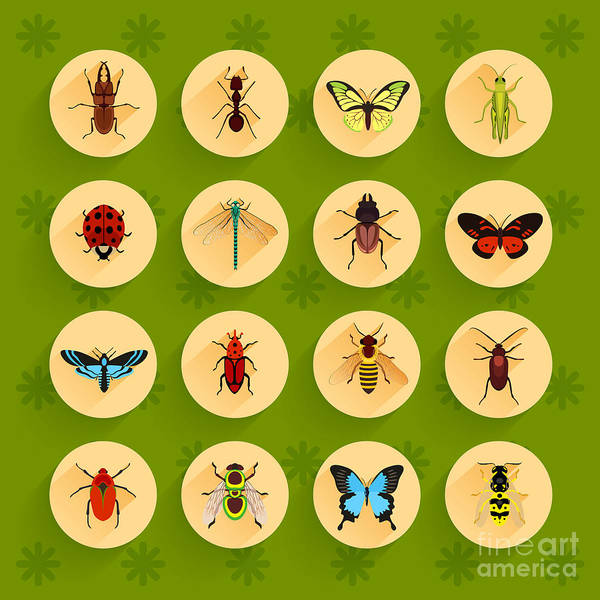 Wall Art - Digital Art - Insects Round Button Flat Icons Set by Macrovector