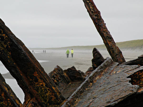 Photograph - Inside The Shipwreck  by Micki Findlay