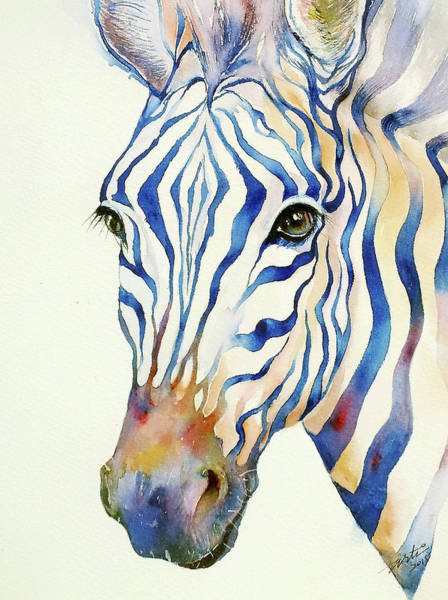 Zebra Painting - Intense Blue Zebra by Arti Chauhan