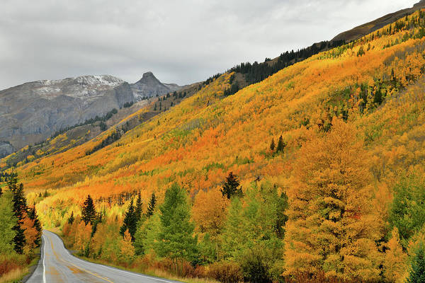 Photograph - Intermittent Light On Fall Colors Along Million Dollar Highway by Ray Mathis