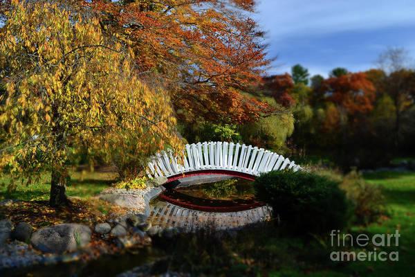 Wall Art - Photograph - International Friends Garden Bridge by Amy Lucid