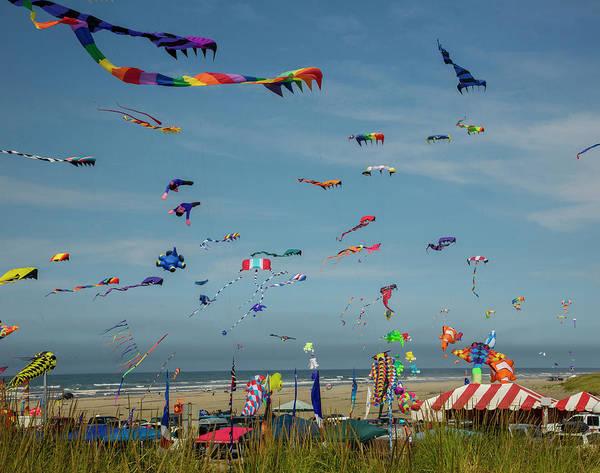 Kite Festival Wall Art - Photograph - International Kite Festival by Bob Pool