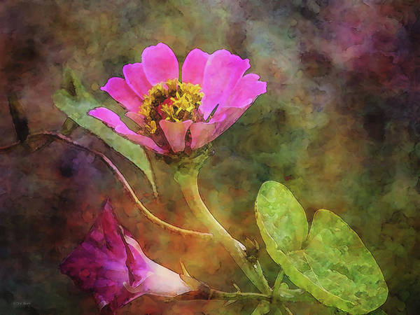 Photograph - Intertwined 5790 Idp_2 by Steven Ward