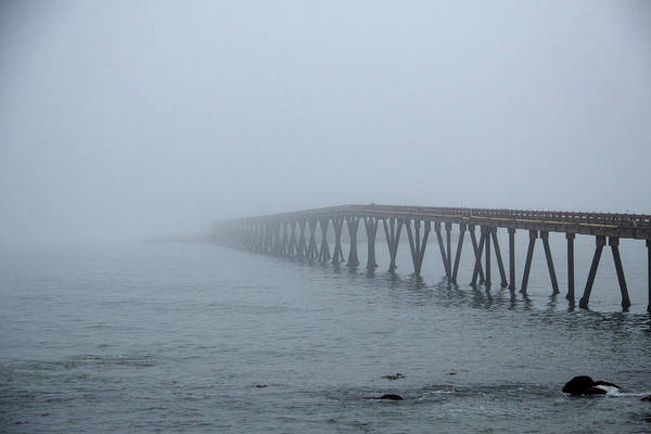 Photograph - Into The Fog by Marie Leslie