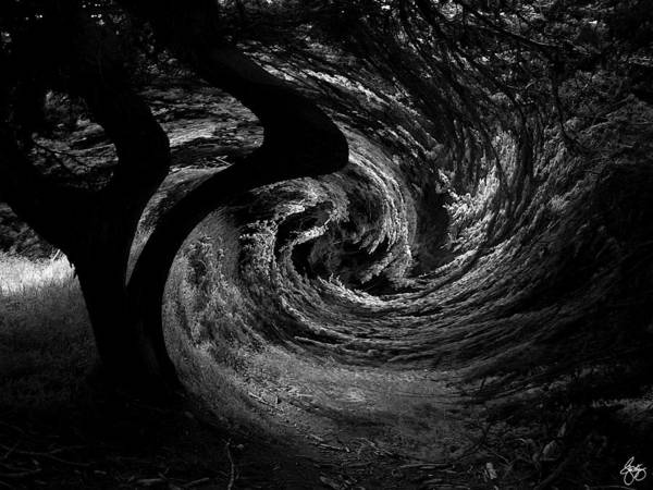 Photograph - Into The Vortex by Wayne King