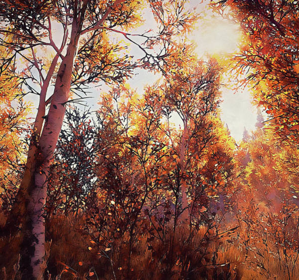 Painting - Into The Wild - 05  by Andrea Mazzocchetti