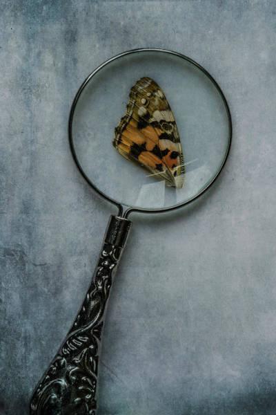 Photograph - Investigation by Jaroslaw Blaminsky