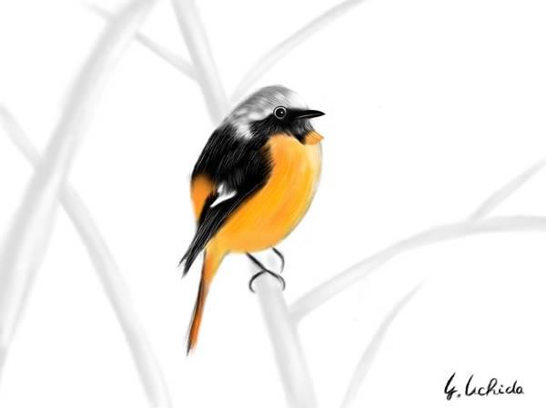 Painting - iPad sketch 1.29.19 bird by Yoshiyuki Uchida