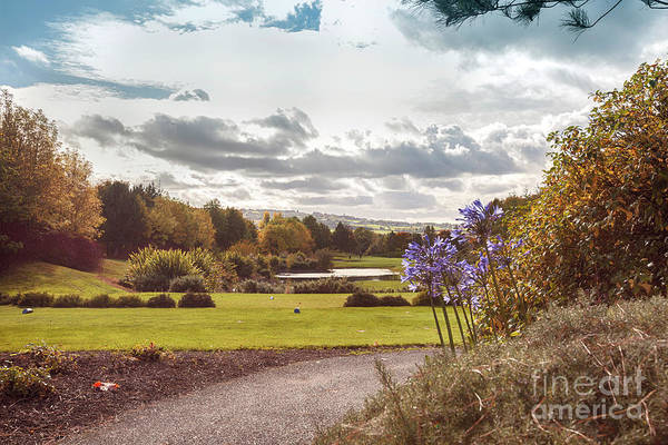 Photograph - Ireland Autumn Country Side by Ariadna De Raadt