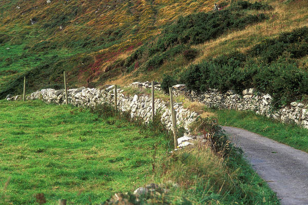 Wall Art - Photograph - Ireland, County Cork, Cape Clear by Mary Kate Denny