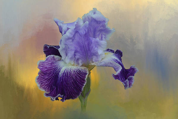 Spring Mountains Mixed Media - Iris 024 by Isabela and Skender Cocoli