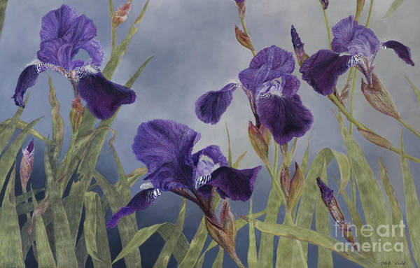 Painting - Iris Hybrida  Detail by Odile Kidd