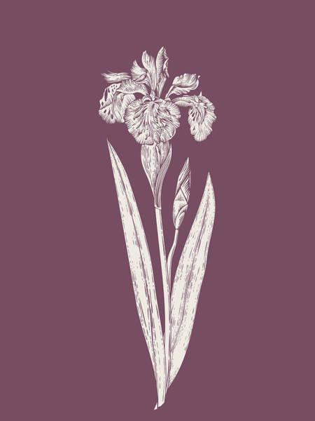 Bouquet Mixed Media - Iris Purple Flower by Naxart Studio