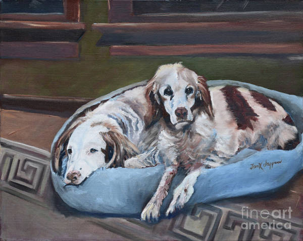 Painting - Irish Red And White Setters - Archer Dogs by Jan Dappen