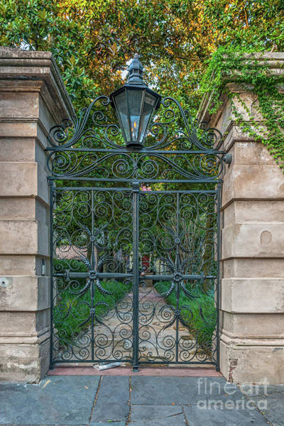 Photograph - Iron Sword Gates - Charleston by Dale Powell