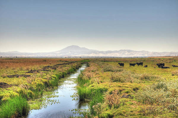 Mt. Diablo Wall Art - Photograph - Irrigation Canal In The Country Hdr by Toddarbini