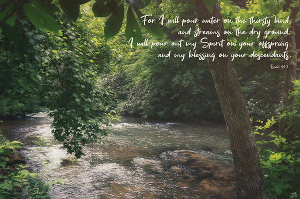 Photograph - Isaiah 44 3 II #bibleverse #scripture  by Andrea Anderegg