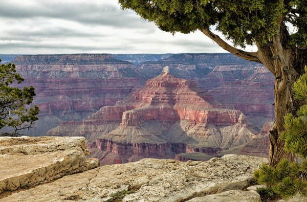 Photograph - Isis Temple Grand Canyon by Robert Woodward