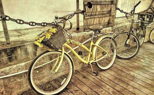 Photograph - Island Biking by JAMART Photography