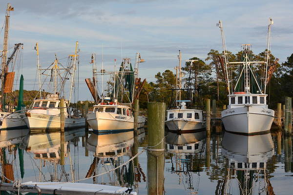 Photograph - Island Harbor by Dan Williams
