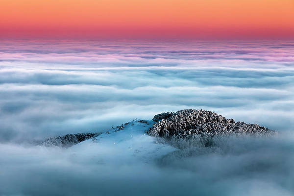 Photograph - Island In The Clouds by Evgeni Dinev
