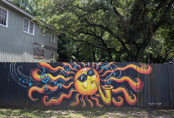 Wall Art - Photograph - Island Jazz by Suzanne Gaff