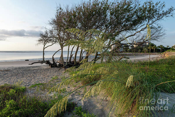 Photograph - Island Time On Breach Inlet In Charleston South Carolina by Dale Powell