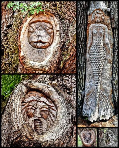 Photograph - Island Tree Spirits by Kathy K McClellan