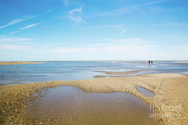 Wall Art - Photograph - Isle Of Palms Beach And Tide Pools by Sharon McConnell