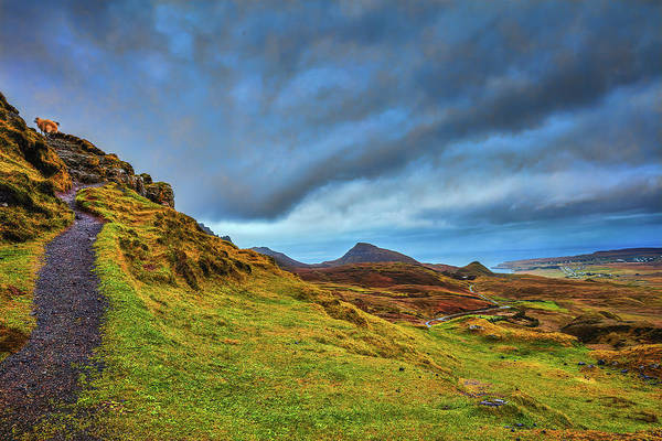 Photograph - Isle Of Skye Landscape #i1 by Leif Sohlman