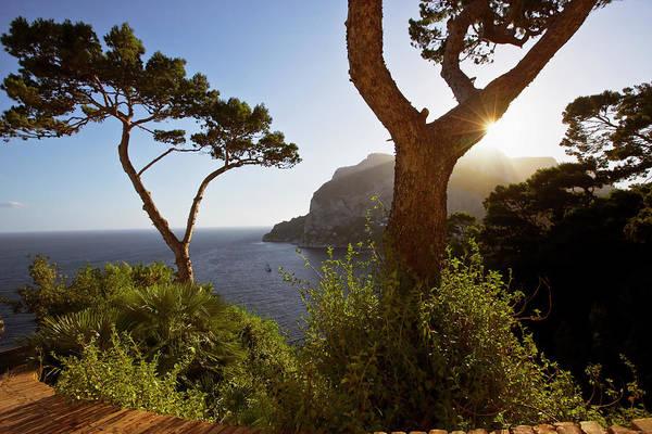 Capri Photograph - Italy, Campania, Capri Island, Capri by Maremagnum