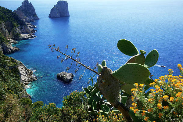 Capri Photograph - Italy, Campania, Gulf Of Naples, Capri by Moirenc Camille / Hemis.fr