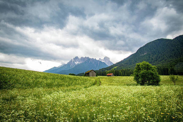 Wall Art - Photograph - Italy Countryside by Shari Pederson