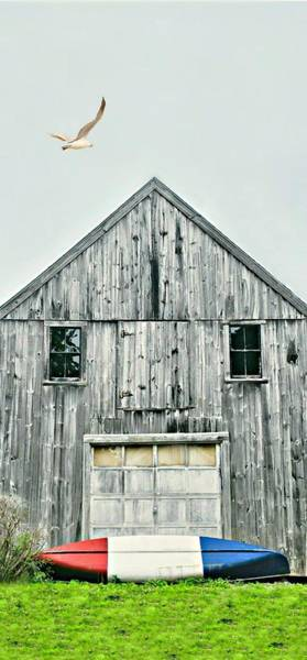 Wall Art - Photograph - It's A Maine Thing by Diana Angstadt