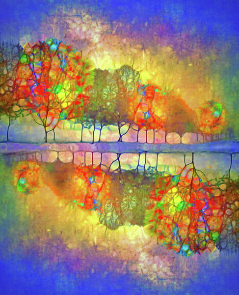 Wall Art - Digital Art - It's Only A Difference Of Reflection by Tara Turner