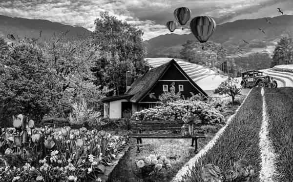 Photograph - It's Springtime In Black And White by Debra and Dave Vanderlaan