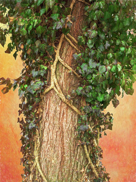 Digital Art - Ivy Covered Tree On Vintage Backdrop by Jason Fink