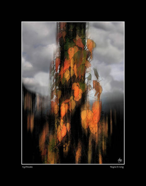 Photograph - Ivy Dreams Fine Art Poster by Wayne King