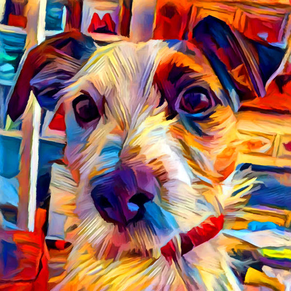 Wall Art - Painting - Jack Russell Terrier 2 by Chris Butler