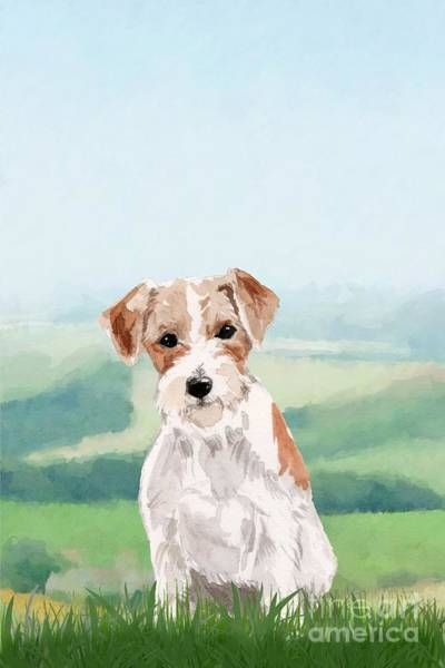 Pedigree Painting - Jack Russell Terrier by John Edwards