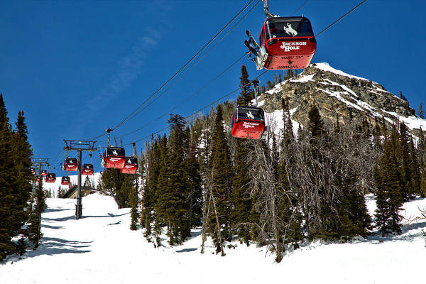 Photograph - Jackson Hole Bridger Gondola by Adam Jewell