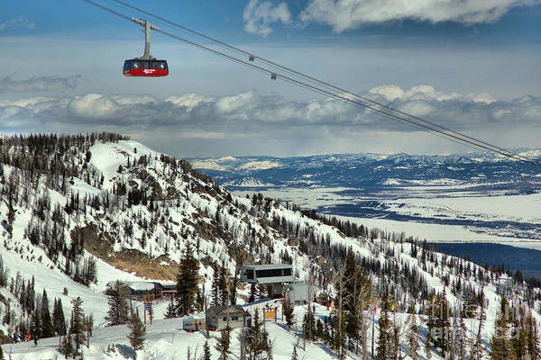 Photograph - Jackson Hole Tram Paradise by Adam Jewell