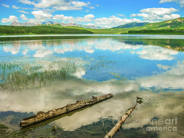 Photograph - Jackson Lake Overlook by Benny Marty