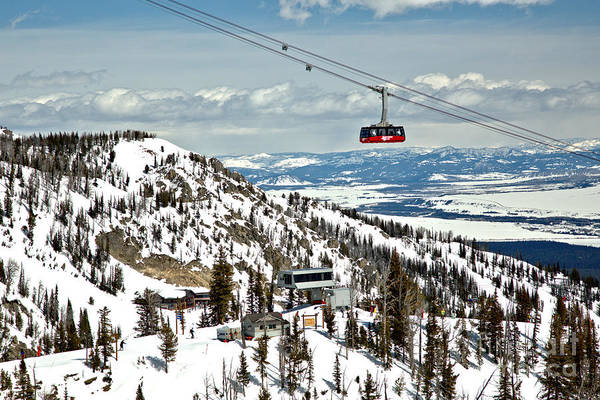 Photograph - Jackson Ski Tram In The Sky by Adam Jewell