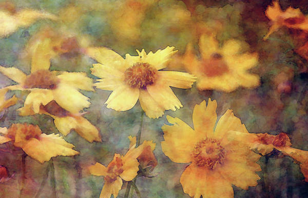 Photograph - Jagged Gold 7005 Idp_2 by Steven Ward