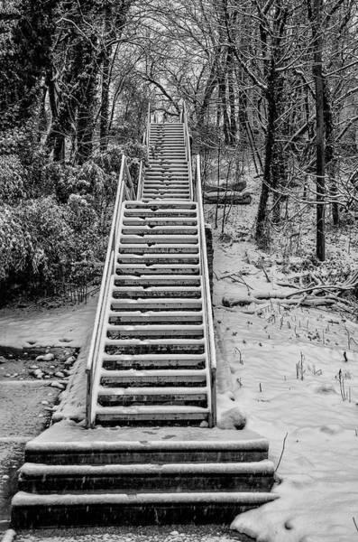 Photograph - Jamestown Street Steps - Manayunk Philadelphia by Bill Cannon