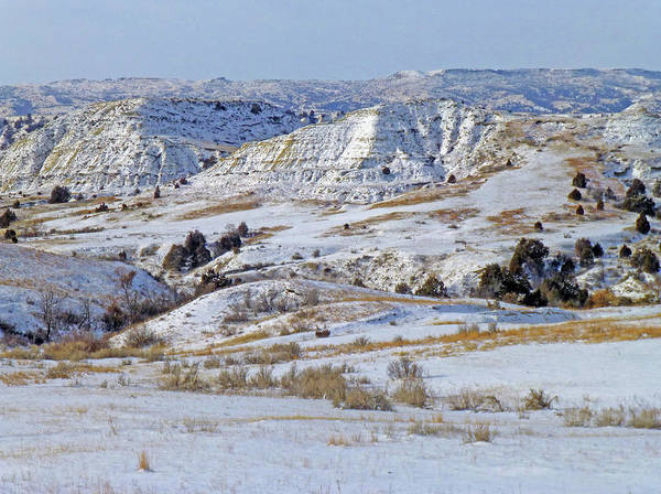Photograph - January Badlands Enchantment by Cris Fulton
