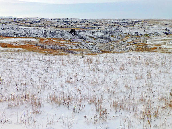 Photograph - January Badlands Prairie by Cris Fulton