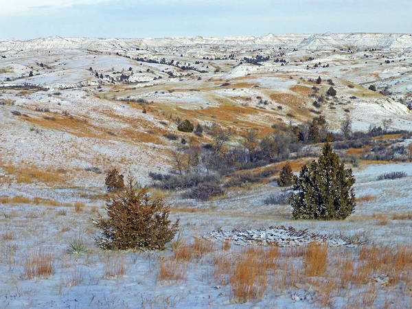 Photograph - January Grasslands And Badlands by Cris Fulton