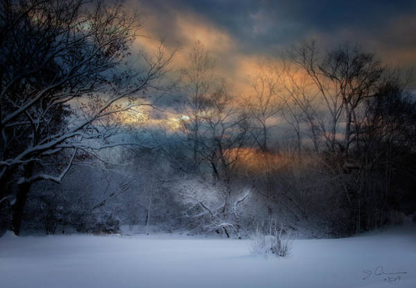 Photograph - January Michigan by Evie Carrier